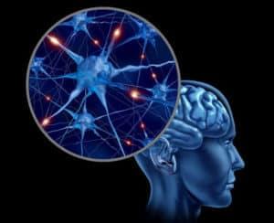 МРТ исследование для исключения болезни Паркинсона